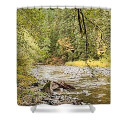Peaceful Molalla River Shower Curtain