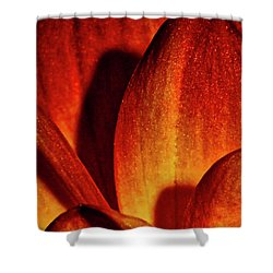 Peach Petals Shower Curtain