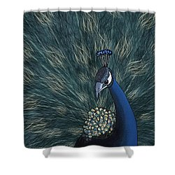 Peacock  Digital Change2 Shower Curtain