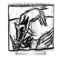 Pencil Squares Black Canine F Shower Curtain