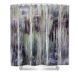 Phases Of Spring  Shower Curtain