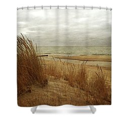 Pier Cove Beach With Autumn Grasses Shower Curtain