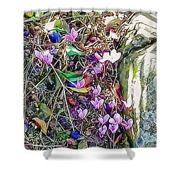 Pink Cyclamen With Fallen Damsons Shower Curtain