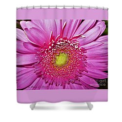 Pink Flowers P4 Shower Curtain