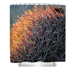 Pink Prickly Cactus Shower Curtain