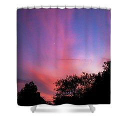 Pink Whisps Shower Curtain