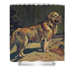 Pixel In The Dunes Of Loon Op Zand Shower Curtain