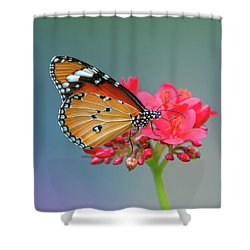 Shower Curtain featuring the photograph Plain Tiger Or African Monarch Butterfly Dthn0246 by Gerry Gantt
