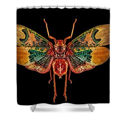 Planthopper Lanternfly Shower Curtain