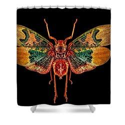 Planthopper Lanternfly Shower Curtain