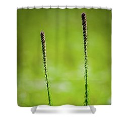 Prairie Blazing Star Shower Curtain