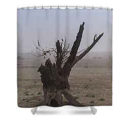 Prayer Of The Ent Shower Curtain