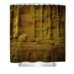 Prehistoric Scene Shower Curtain