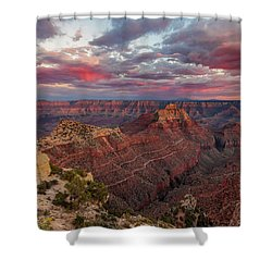 Shower Curtain featuring the photograph Pretty In Pink by Rick Furmanek