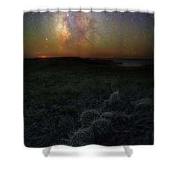 Shower Curtain featuring the photograph Pricked  by Aaron J Groen