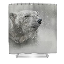 Prince Of The North Pole Shower Curtain