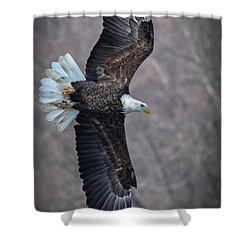 Profile Shower Curtain
