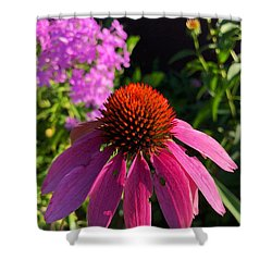 Shower Curtain featuring the photograph Purple Coneflower by Lukas Miller