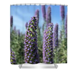 Purple Hyssop  Shower Curtain