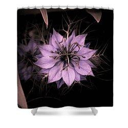 Purple Peculiarity Shower Curtain
