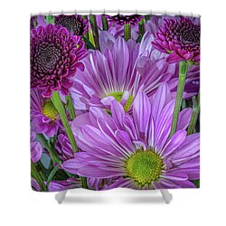 Purple Power Shower Curtain