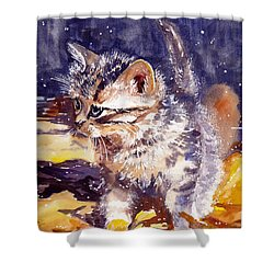 Pussy On A Yellow Blanket Shower Curtain
