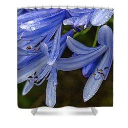 Rain Drops On Blue Flower Shower Curtain