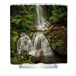 Rainier Falls Creek Falls Shower Curtain