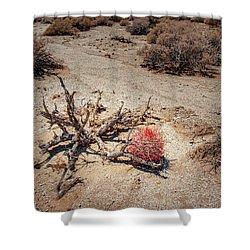Red Barrel Cactus Shower Curtain