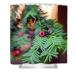 Shower Curtain featuring the photograph Red Berry On Green by Scott Lyons