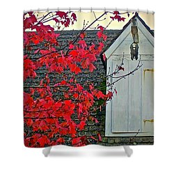 Red... Shower Curtain