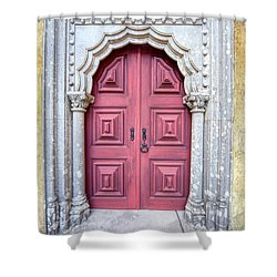 Red Medieval Door Shower Curtain