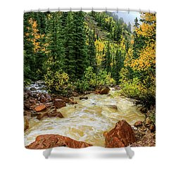 Red Mountain Creek In San Juan Mountains Shower Curtain