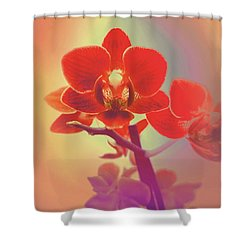 Shower Curtain featuring the mixed media Red Orchid  by Rachel Hannah