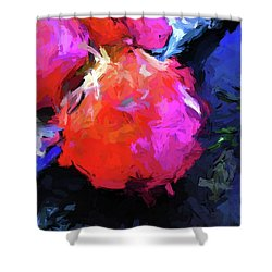 Red Pomegranate In The Blue Light Shower Curtain