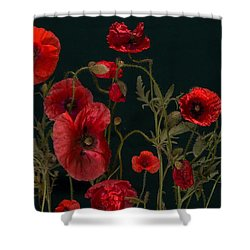 Red Poppies On Black Shower Curtain