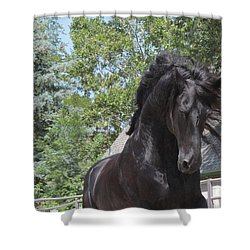 Regal Power Shower Curtain