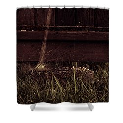 Relief Shower Curtain