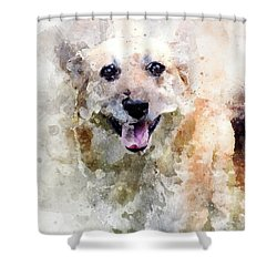Remember The Four-legged Smile Shower Curtain