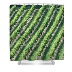 Riesling On The Rhine Shower Curtain