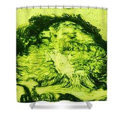 Rhapsody In Green Shower Curtain