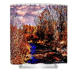 Rio Taos Bosque V Shower Curtain