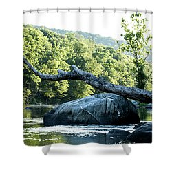 River Tree Shower Curtain