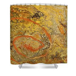 Riverbed Stone Shower Curtain