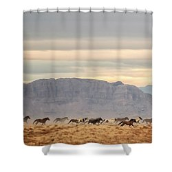 Roam Free Shower Curtain