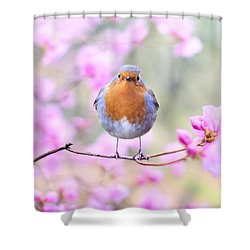 Robin On Pink Flowers Shower Curtain