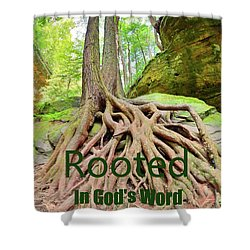 Rooted In God's Word Shower Curtain