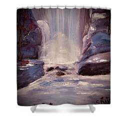 Royal Falls Shower Curtain