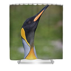 Royalty Shower Curtain