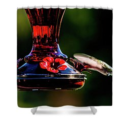 Shower Curtain featuring the photograph Ruby Throated Beak Deep by Onyonet  Photo Studios